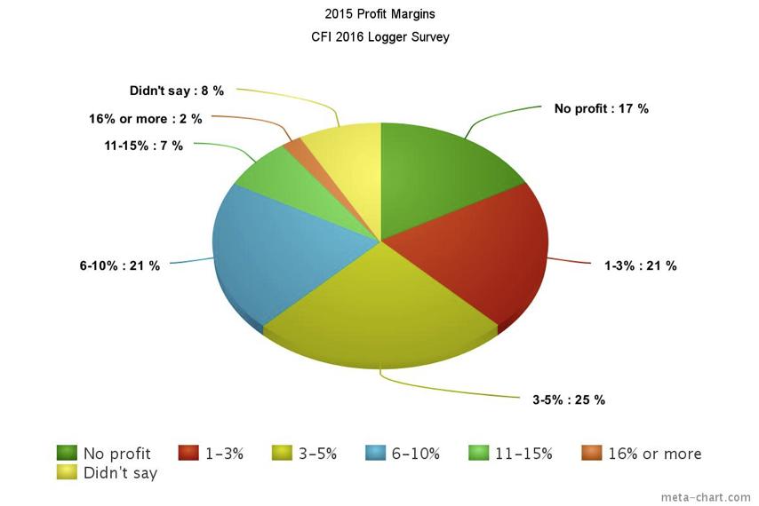 2015 profit margins