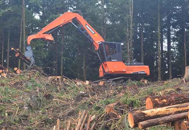 DEMO spotlights new logging equipment - Wood Business