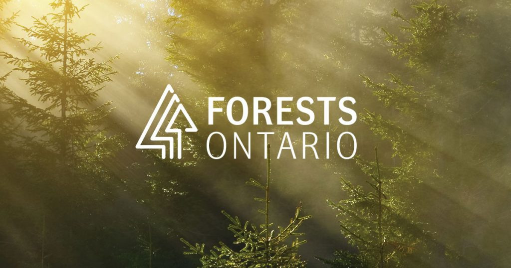 Forests Ontario: Ontario needs more trees!