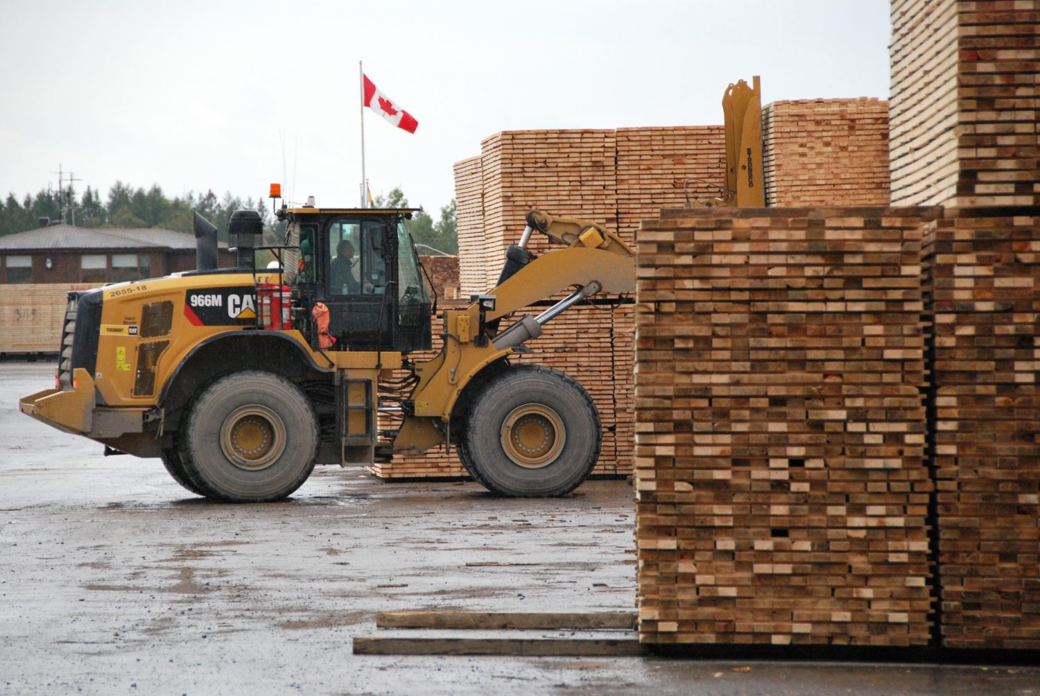 WTO: US duties imposed on Canadian softwood breaches global trading rules