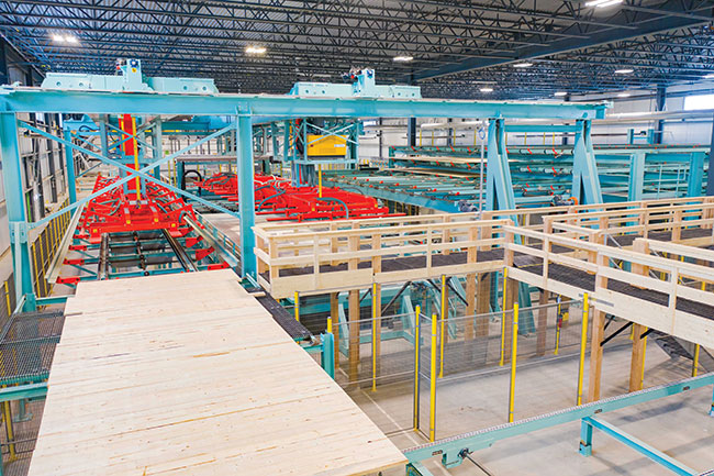 Growth opportunity: Element5's new mass timber facility comes online