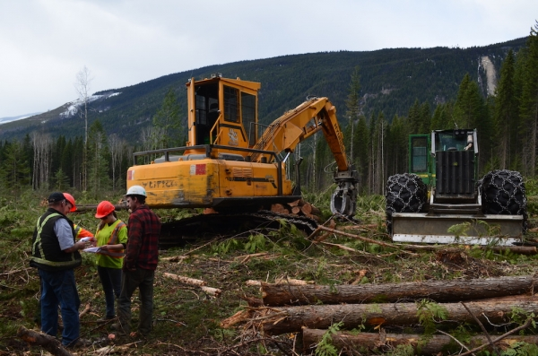 Communication – the missing key to effective management in forestry